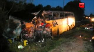 «Не было места для нее»  погибшую вДТП под Псковом отговаривали от поездки