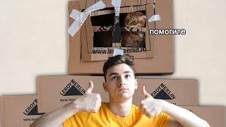 Я построил ГИГАНТСКИЙ картонный домик для кота :]