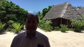 Zanzibar du relais & châteaux aux singes