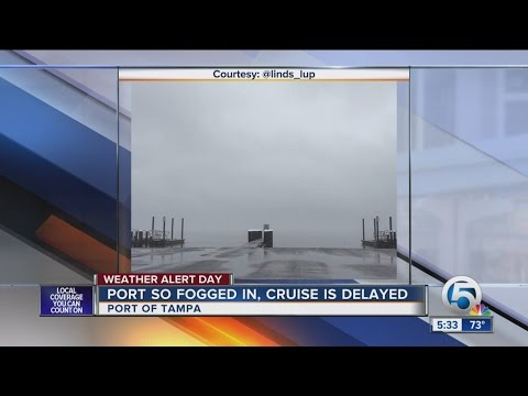Fogged port delays cruise