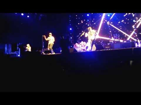 Red Hot Chili Peppers - Otherside Live in Belo Horizonte 02/11/2013