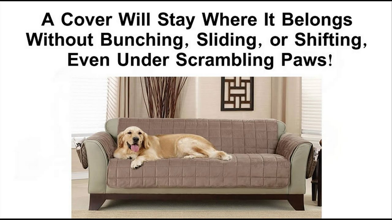 Best Pet Furniture Covers   Protect Your Couch Or Sofa   YouTube