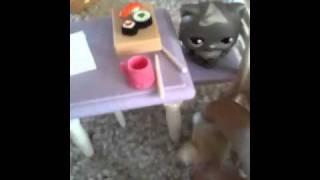 Littlest pet shop sushi deluxe