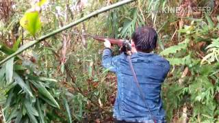hmong plog mus tua nas noog ngob rau xyoo 2016