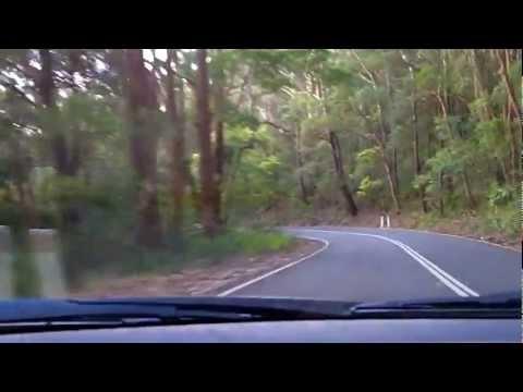 Sydney's Best Driving Roads - Royal National Park Pt.2