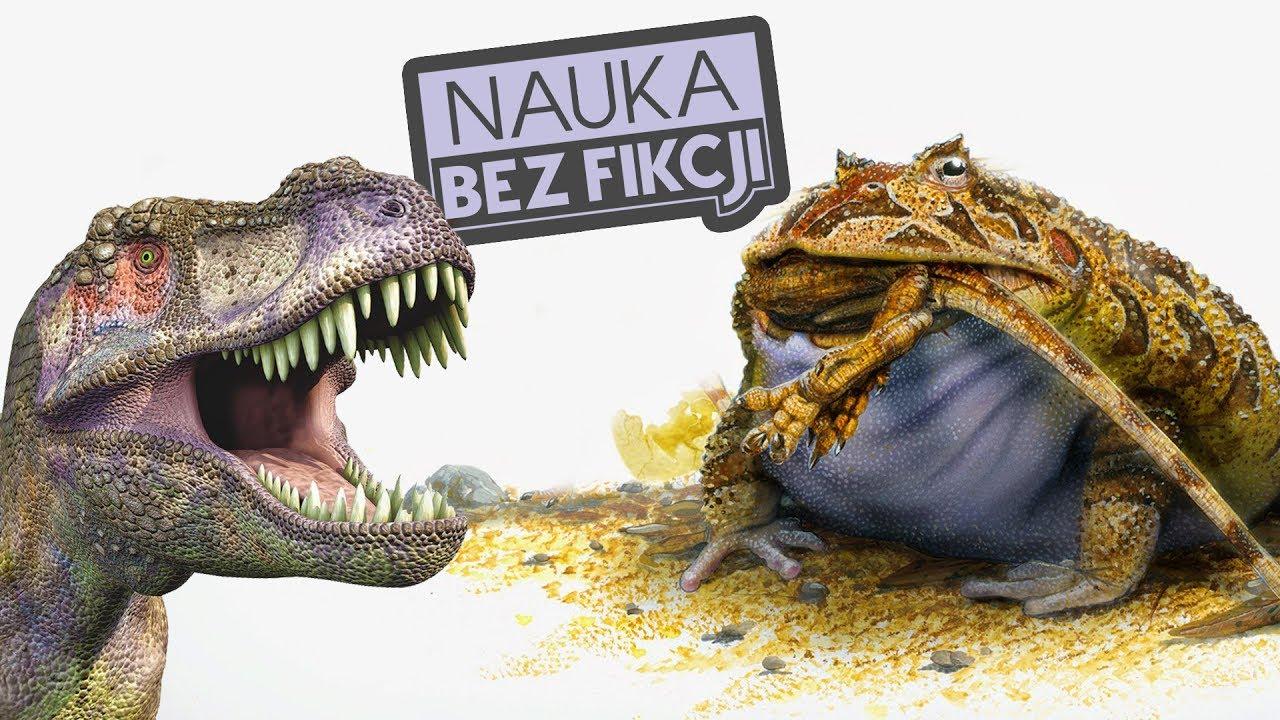 """O tym jak wyginięcie dinozaurów pozwoliło żabom """"rozkwitnąć""""    Nauka BEZ fikcji #40"""