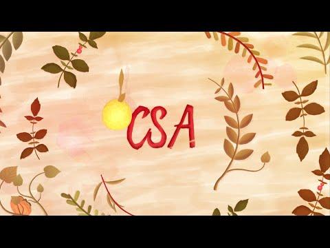 CSA - Comunidade que Sustenta a Agricultura