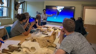 Stanford team uses 3D scannning tech to preserve art and artifacts thumbnail