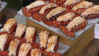 Lobster Gram (10) or (20) 4-5 oz. Lobster Tails w/Butter & Seasoning on QVC