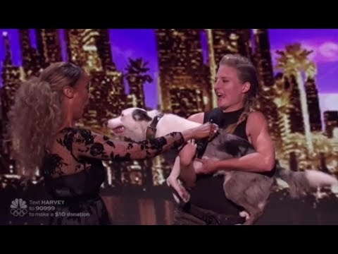 Sara Carson & Hero:  The Dog ACT Simon Cowell Fell in LOVE With! America's Got Talent 2017