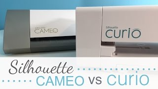 Cameo vs Curio | What's the Difference?
