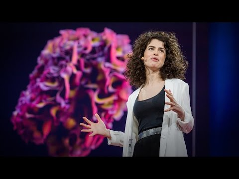 Design at the Intersection of Technology and Biology | Neri Oxman | TED Talks