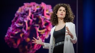 Design at the Intersection of Technology and Biology | Neri Oxman | TED Talks thumbnail