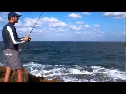 "Israel Sport Fishing - Spinning for baby amberjacks - Using ""feathers"""