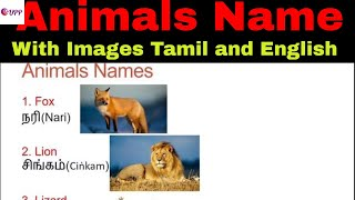 Learn Tamil Through English- Animals Name 3