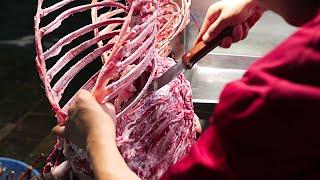 Xi'an China Street Food - Lamb Shish Kebabs