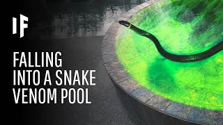 What If You Fell Into a Pool Filled Snake Venom?
