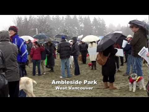 Barking Mad: Whistler sled dog slaughter protest