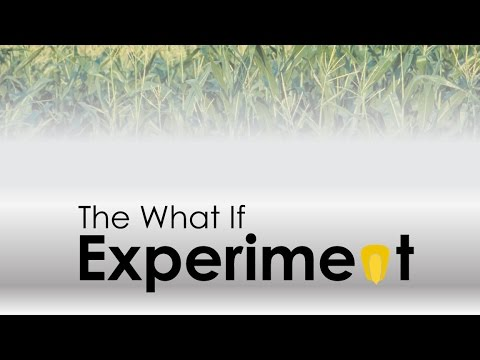 The What If Experiment - Week 2: What If . . . I Commit My Gifts to God?