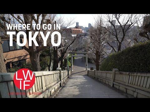 Random Walk Around Tokyo