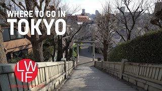 Where to go in Tokyo (Hint: Anywhere)!