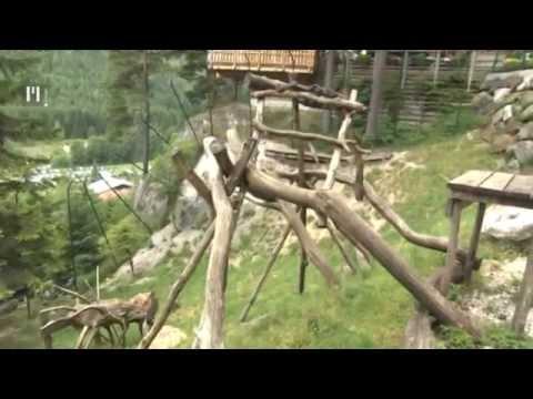 O živalih in ljudeh - TV Maribor 5.7.2014