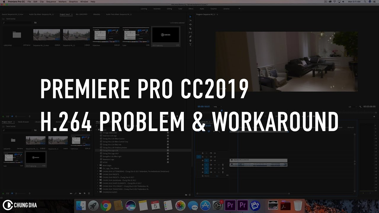Premiere Pro CC2019 H 264 Problem & workaround by Chung Dha