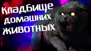 Обзор фильма КЛАДБИЩЕ ДОМАШНИХ ЖИВОТНЫХ