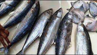FISH MARKET - MALAD (MUMBAI) Wholesale & Biggest Fish Market of Mumbai Suburban