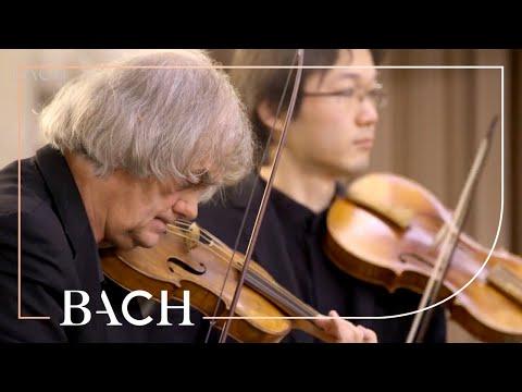 Bach - Cantate Die Elenden Sollen Essen BWV 75 - Kuijken   Nederlandse Bachvereniging