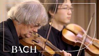 Bach - Cantata Die Elenden sollen essen BWV 75 - Kuijken | Netherlands Bach Society
