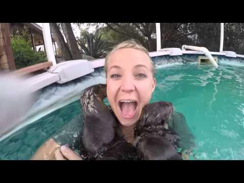 Stephanie Arne Otter Happiness