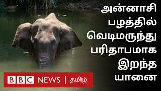 இப்படியுமா மனிதர்கள் இருக்கிறார்கள்? – கேரளாவில் கொடூரம்
