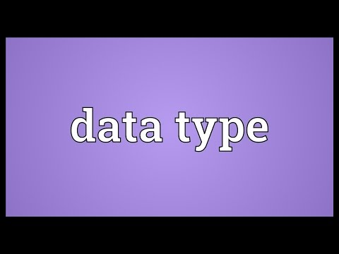 Data type Meaning