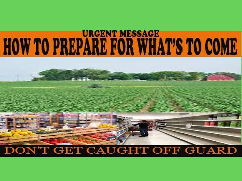 The Alternative to GMO Foods -Grow Your Own Food