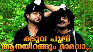 കടുവ പുലി ആനയിറങ്ങും മാമല  | ഇരുമുടി | New Ayyappa Devotional Songs Malayalam 2015
