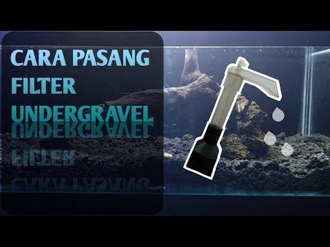 Cara Pasang Filter Undergravel Di Aquarium