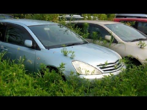 Junkyard car finds in japan Nissan Skyline R32 not GT-R ...