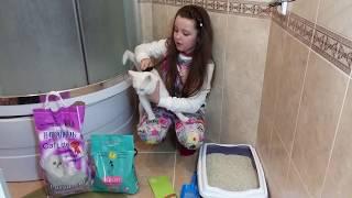 Выбираем наполнитель для кошачьего туалета!!!