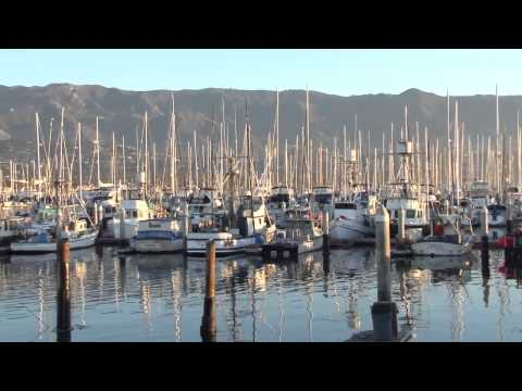 Local sustainable Seafood Santa Barbara   Catch of the Week