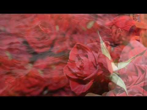 В чем проявляется настоящая любовь мужчины к женщине миллион алых роз