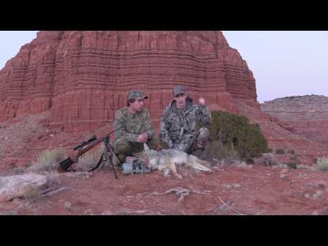 Coyote Hunting Arizona Episode #6
