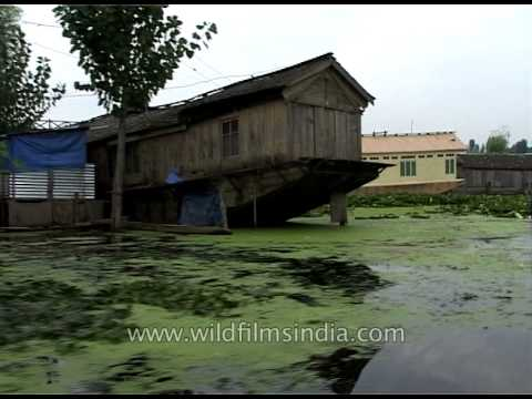 Kashmiri Houseboats in Srinagar! from YouTube · Duration:  1 minutes 24 seconds