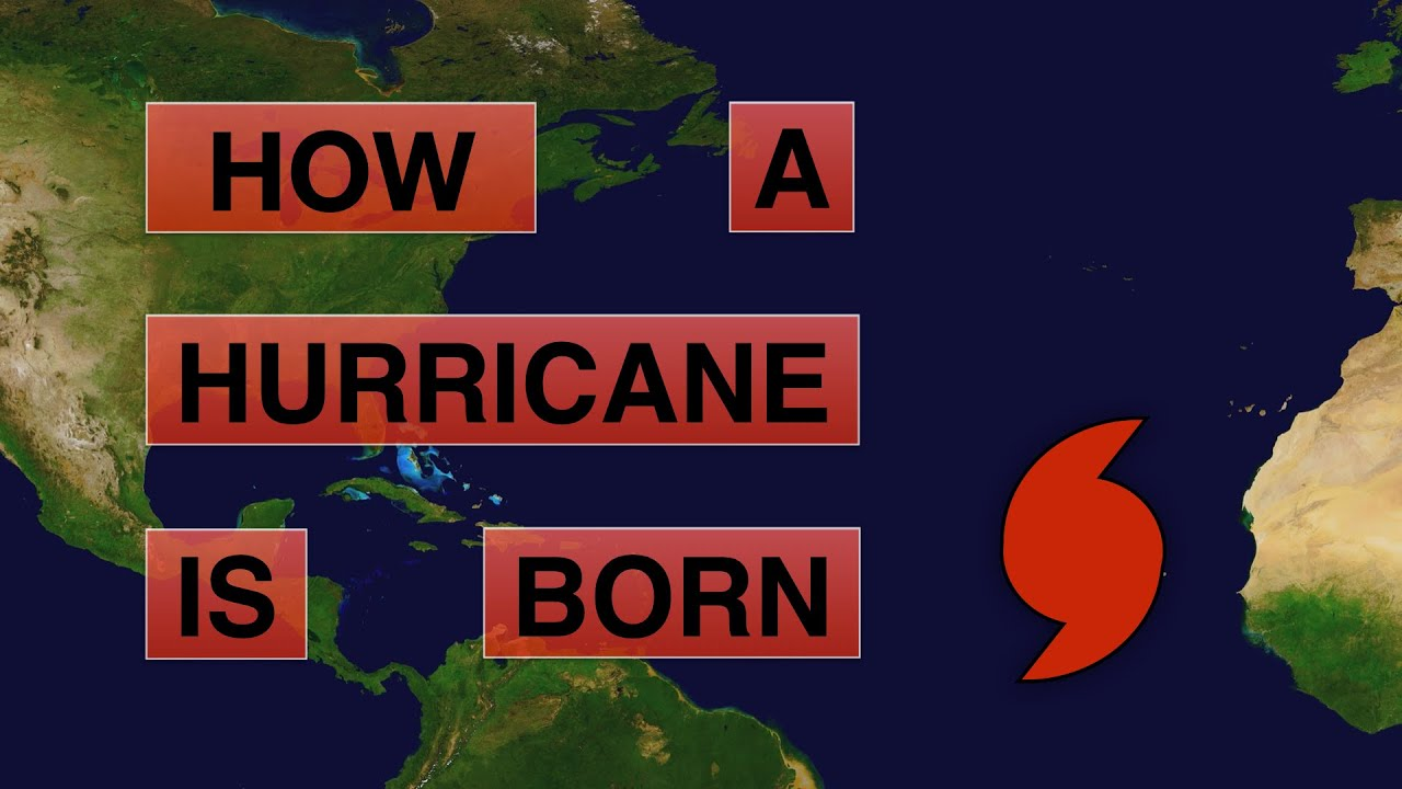 How does a Hurricane form? | Deciphering Weather