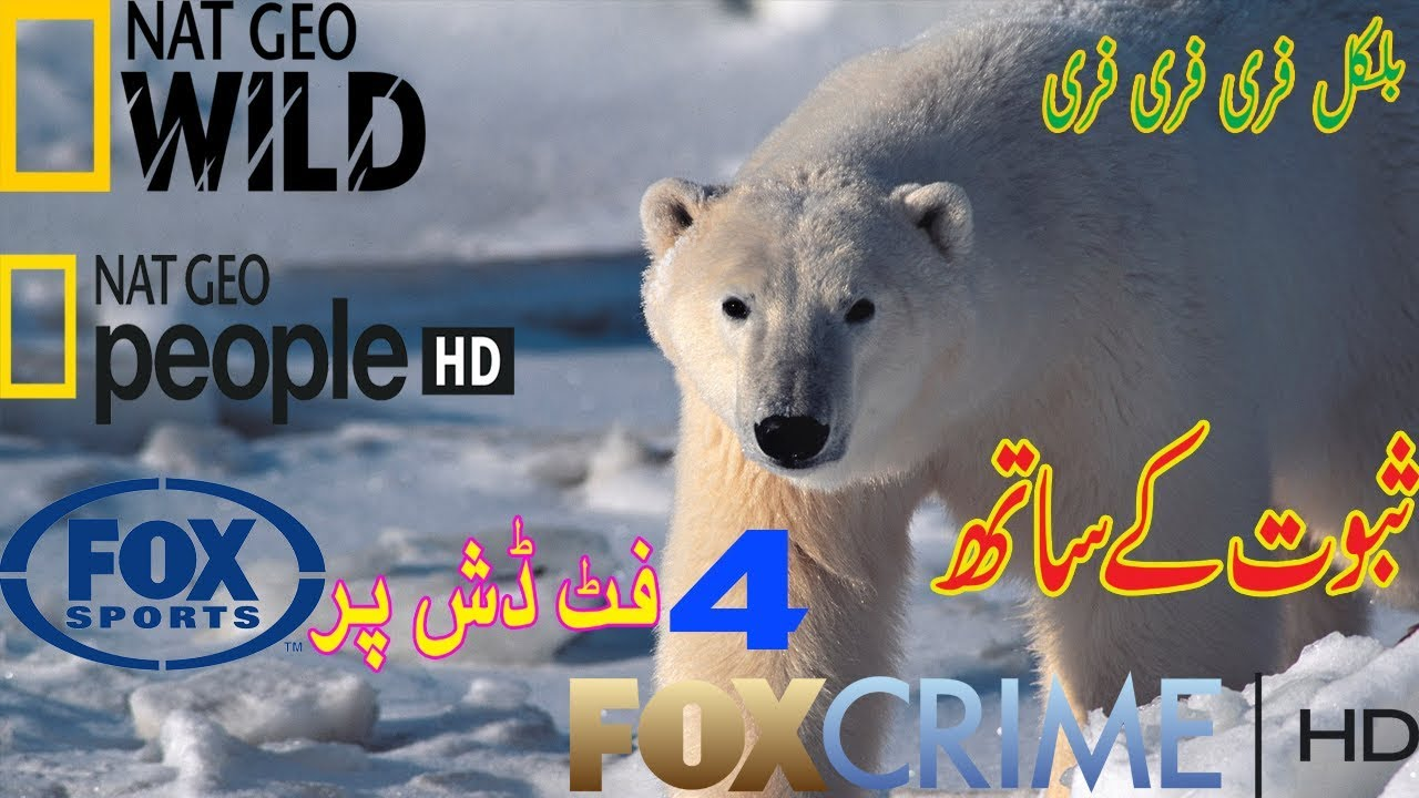 How to set turksat 42e /animal channel/Nat geo Wild free to air/fox  sport/free to air(urdu hindi)