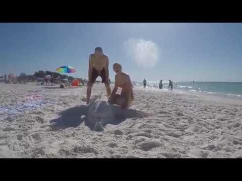 Cvs Bradenton Beach Fl