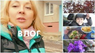 Влог/VLOG Обычная жизнь БЕЗ прикрас: без макияжа, деревенские