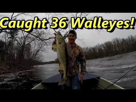 Caught 36 Walleyes (PLUS Huge One) While Fishing The Wisconsin River 2017