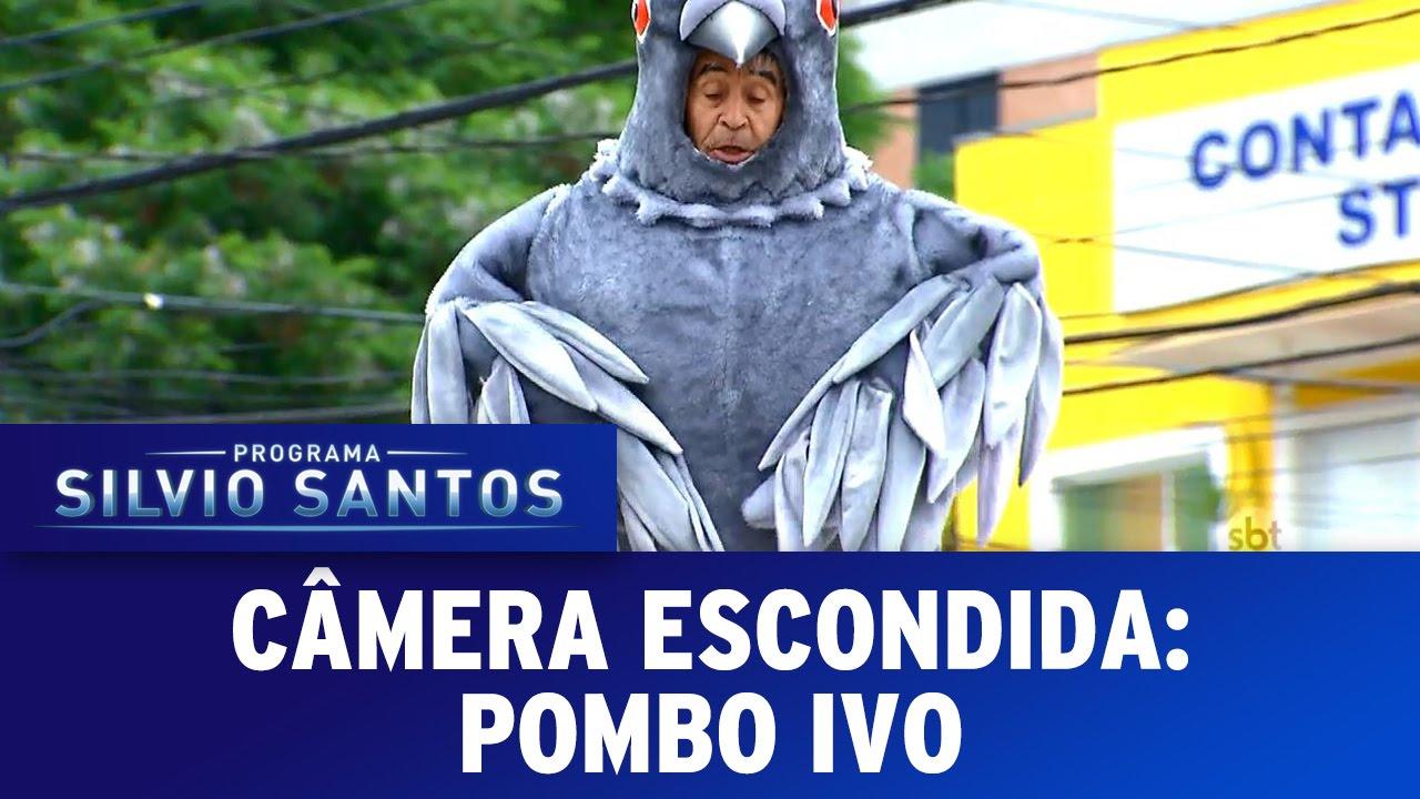 Download Câmera Escondida (25/09/16) - Pombo Ivo