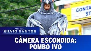 Câmera Escondida (25/09/16) - Pombo Ivo